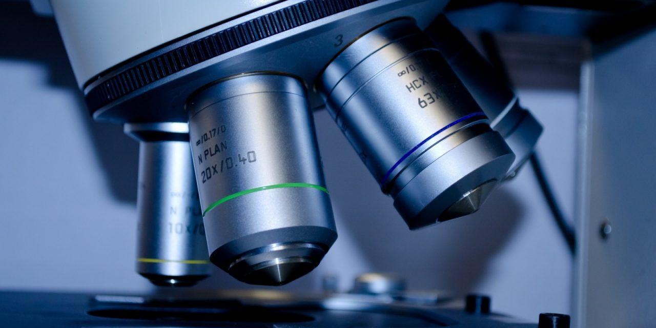 Trichogramm, TrichoScan und Kopfhaut-Biopsie
