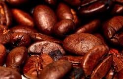 Dr.-Balwi-Shampoo-Koffein
