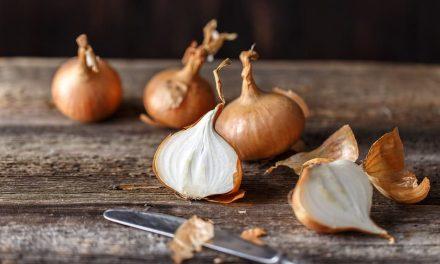 Zwiebel gegen Haarausfall- So wirkt die Pflanzenart wirklich