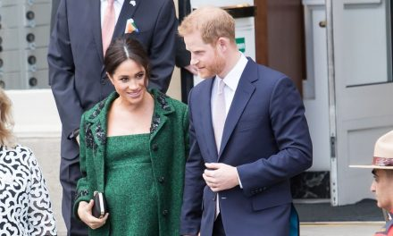 Nun soll sich Prinz Harry Haare transplantieren lassen!