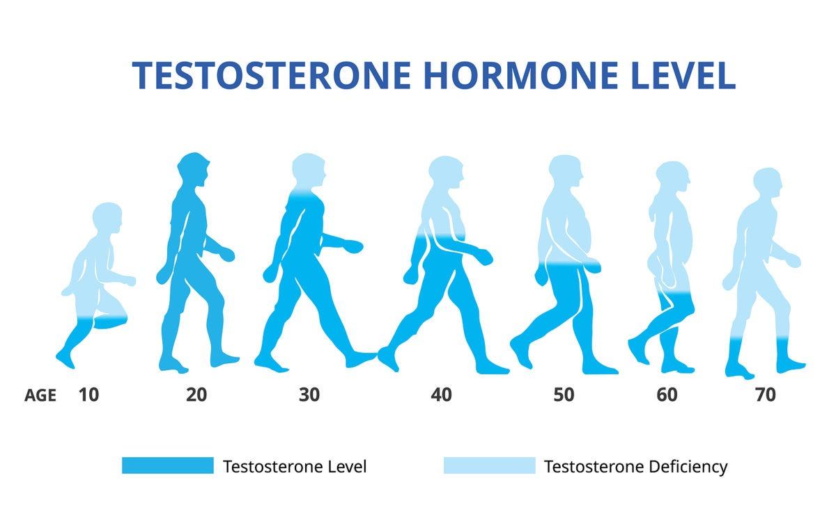 Testosteronmangel und Haarausfall bei Männern